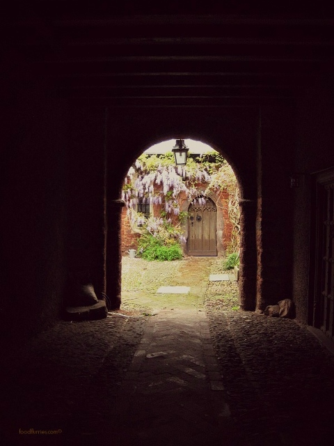 Exeter_Wisteria House